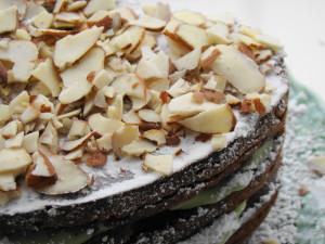 Mocha Almond Fudge Avocado Cake