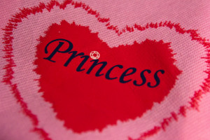 Pink Princess Heart Shopping Bag Macros October 26, 20105