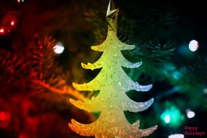 Week #50 Happy Holidays [50of52]