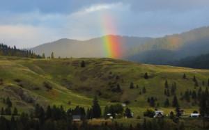 Rainbows 680