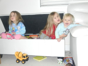 Three Cheeky Monkeys in Toy Box